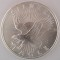 Sunshine Mint Silver Eagle silver round one troy ounce