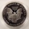 1991 S American Silver Eagle Proof