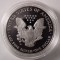2002 W US Silver Eagle Proof