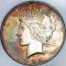 1922 S Peace Dollar Toned