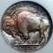1931 S Buffalo Nickel