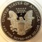 1996 P American Silver Eagle Proof