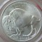 2001 D American Buffalo Commemorative Dollar UNC