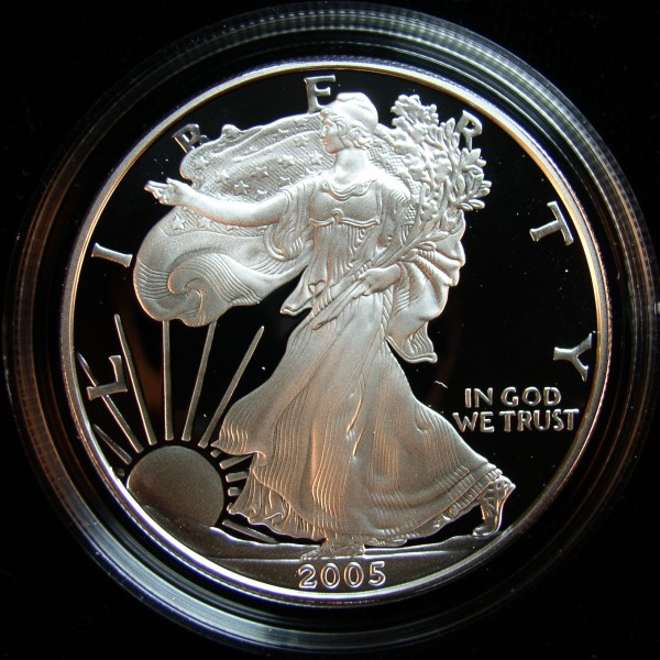 click for larger picture of 2005 W American Silver Eagle Proof