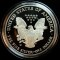 2005 W American Silver Eagle Proof