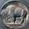 1936 S Buffalo Nickel