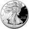 2008 W American Silver Eagle Proof