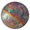 1882 S Morgan Dollar Rainbow Toned